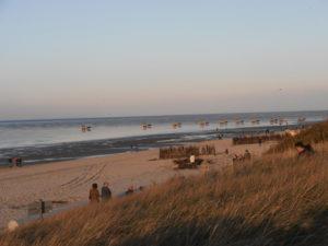 Strand mit Wattwagen